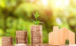 Sustainable Finance – Green Finance – und Regulierung. Quo vadis?
